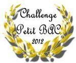 logo Petit bac