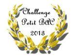 logo Petit Bac 2013